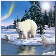 Diamond Painting Polar Bear and her Cubs Kit Cross Paintings, Easy Paintings, Animal Paintings, Animal Drawings, Number Drawing, Glitter Pictures, 5d Diamond Painting, Drawing Skills, Wildlife Art