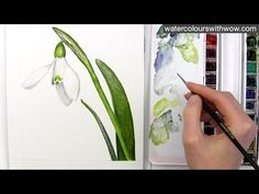 How to paint a realistic white snowdrop flower in watercolor by Anna Mason - YouTube