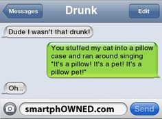 Other - DrunkDude I wasn't that drunk!You stuffed my cat into a pillow case and ran around singing 'It's a pillow! It's a pet! It's a pillow pet!'Oh...