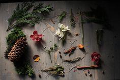 Remnants of Winston Flowers' winter photo shoot.