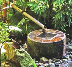 Cascada con bambú.
