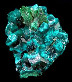 Dioptase crystals with Malachite sprays and Plancheite from the Tantara Mine, Shinkolobwe, Katanga, Democratic Republic of Congo. Measures 5.7 cm by 5.2 cm by 2.8 cm in total size.