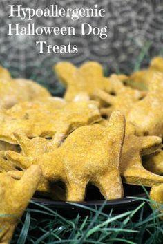 Yummy Halloween Hypoallergenic Dog Treats