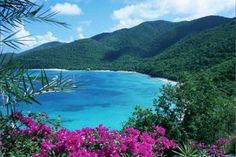 St. John in the Virgin Islands.  One of the most beautiful places in the world.