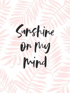 Summer Quotes : Sunshine On My Mind – Pink Palm Leaves Art Print by Creative Index