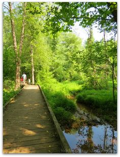 7 Greenville SC parks with great outdoor spaces // yeahTHATgreenville