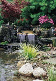 Pretty water garden and relaxing to watch.
