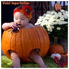 Violet Imperfection: DIY: Pumpkin Photo Shoot - I want to find a big enough one next year to put Brook in, lol