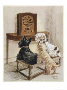 Three Dogs Enjoy a Radio Broadcast - Scottie and Jack Russell and Cairn Terriers by Marjorie Turner