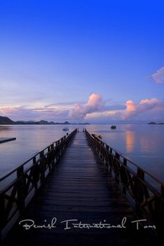 Komodo Island Bridge, Flores Indonesia http://www.balistarisland.com/Komodo/Tours.html