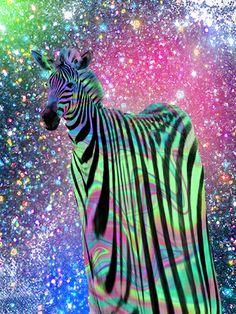 trippy warped zebra with glitter sparkles background #psychedelic