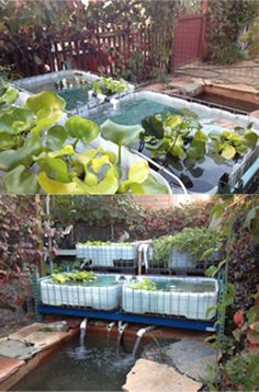 Grow City: ASLA 2012 - Urban Agriculture as a Way to Educate
