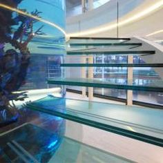 Helical Glass Staircase Around Giant Fish Tank: Modern Corridor, Hallway U0026  Stairs By Diapo