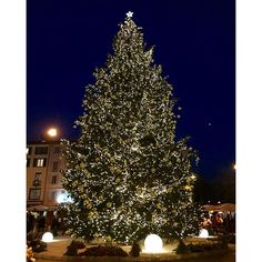 Magica #Lugano ❤️❤️❤️ #happynewyear #buonanno #alberodinatale #luminarie #città #christmaslights #city #wonderful #atmosfera #inverno #winter #christmastree #ticino #switzerland #svizzera #laurart #piazzariforma