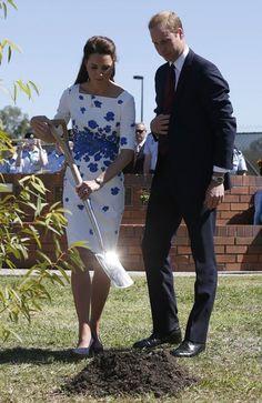 Prince William Photos - The Duke And Duchess Of Cambridge Tour Australia And New Zealand - Day 13 - Zimbio