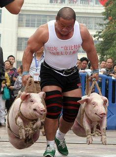 The Host was described to be a strong, manly man. In this picture, there is a very muscular man carrying pigs which could be what the Host looked like when gathering the food for the pilgrims.