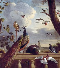 "An archival giclée reproduction of ""Palace of Amsterdam with Exotic Birds,"" a oil painting by Dutch artist Melchior de Hondecoeter. The artist was renowned for his depictions of domestic and exotic birds, rendering them in brilliant color and s. Amsterdam, Royal Pavilion, Bird Canvas, Bird Wall Art, Peacock Art, Peacock Feathers, Oil Painting Reproductions, Exotic Birds, Canvas Art Prints"