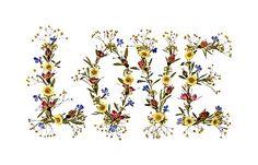 Pressed flower artworks