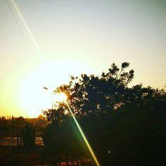 #APITConnect - Ray of hope!! Good morning  #indore #circleoflove #joga #jogi #parkave #healing #love #sunrise #peace #creativity #tulip #green #red #nyc #uppereastside #today #youarenotalone #beautiful #summer #beauty #nature #tree #mothernature #light #weather #follow4follow #skyandtrees by Spruha Joshi http://bit.ly/26lo82i