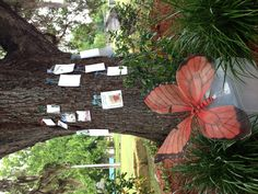 Compassionate friends Remembrance tree