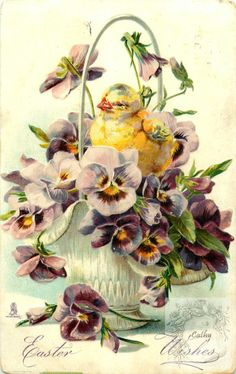 Full Sized Image: EASTER WISHES chick faces left in basket of purple pansies with yellow centres - TuckDB Postcards Easter Art, Easter Crafts, Vintage Greeting Cards, Vintage Postcards, Vintage Images, Easter Vintage, Easter Wishes, Easter Pictures, Decoupage