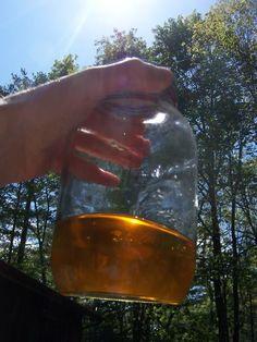 How To Make Biodiesel - SHTF Preparedness