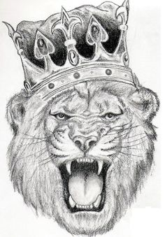 Angry-Lion-Tattoo-Design.jpg (500×720)