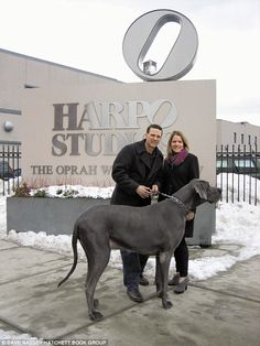 It's a dog's life: Owner of George, the seven foot Great Dane, lifts the lid on life with the world's largest mutt