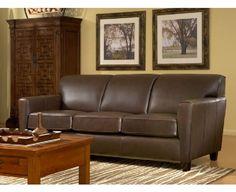 Chestnut Sofa in Living Room