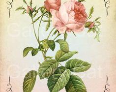 Victorianos rosas con mariposa en descarga por GalleryCat en Etsy