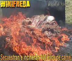 Secuestran e incineran 100 kilos de carne en Winifreda