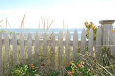 Quintessential Cape Cod. Weathered Fence, Rosa Rugosa, Beach Grass, Nantucket Sound