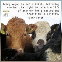 Carnism is elitist. It's the belief in one's superiority and that everyone should be subject to it. Veganism is about dismantling the abuse of one's superiority over others. It's abolitionist, not elitist.