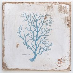 Coral Branch Navy Lithograph on Wood