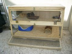 Our new Cage! - Guinea Pig Cage Photos
