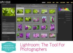 Lightroom: The Photographer's Tool | Pretty Presets for Lightroom