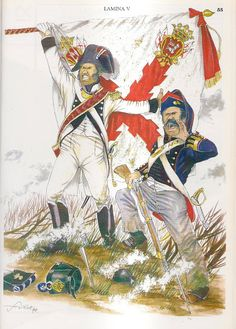 MINIATURAS MILITARES POR ALFONS CÀNOVAS Military Modelling, Spain And Portugal, Napoleonic Wars, Military Art, Empire, Army, Weapons, Pictures, Painting