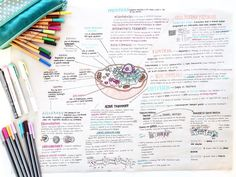 biology college This is one part of my gi - biology Biology Revision, Ap Biology, Biology College, Bullet Journal And Diary, Neat Handwriting, I Love School, Science Notes, Pretty Notes, Nursing Notes