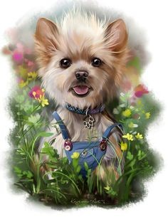 Ari by Kajenna on DeviantArt Animals And Pets, Baby Animals, Cute Animals, Animal Pictures, Cute Pictures, Yorshire Terrier, Yorkshire Terrier Puppies, Gif Animé, Cute Dogs And Puppies