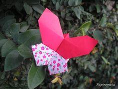 pillangó butterfly