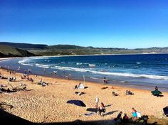 Buffalo Bay is a family beach with safe swimming and great surfing conditions. It is also ideal for walking (all the way to Brenton on Sea) and fishing. West of Knysna Knysna, Stuff To Do, Things To Do, What To Do Today, Places To See, South Africa, Trip Advisor, Buffalo, The Good Place