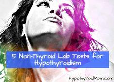 5 Non-Thyroid Lab Tests for Hypothyroidism Thyroid Test, Thyroid Symptoms, Thyroid Issues, Thyroid Disease, Thyroid Problems, Thyroid Health, Heart Disease, Lyme Disease, Autoimmune Disease