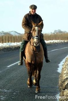 Relieving Sore and Puffy Legs in your Endurance Horse