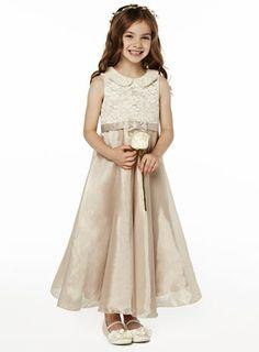 BHS Freya Champagne Lace Dress