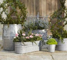 DIY - Galvanized Metal Tubs, Buckets, & Pails as Planters - Lots of great photos and ideas here. Also check out this company for the smaller buckets, tubs, pails...http://galvanizedpail.com/ OR http://www.save-on-crafts.com/galvanized1.html