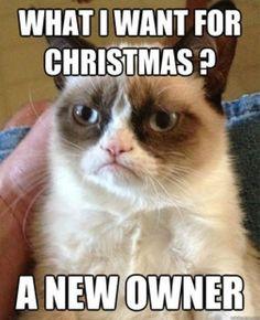 grumpu cat christmas | The best of Grumpy Cat: Holiday Edition - FB ... | GRUMPY CAT!