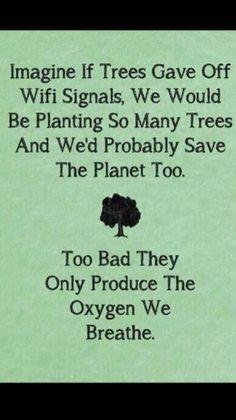 Environment quote