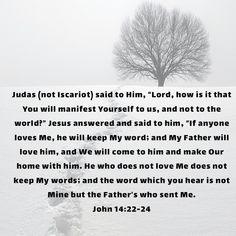 Love Him, My Love, My Father, Bible, Sayings, Words, My Boo, Biblia, Lyrics