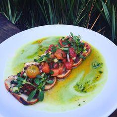 #tendergreenssantamonica #harissa seared albacore, grilled melon & heirloom tomato relish, cooling cucumber broth#delicious
