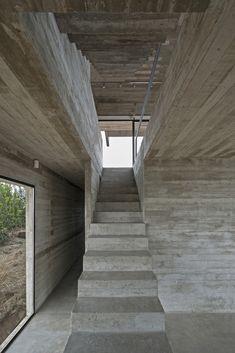Gallery - Golf House / Luciano Kruk Arquitectos - 5
